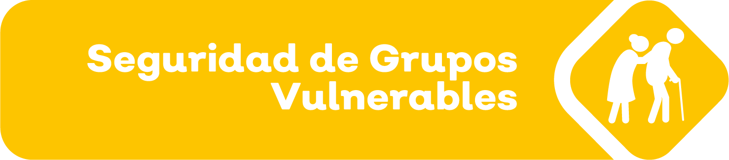 Imagen de Seguridad de Grupos Vulnerables
