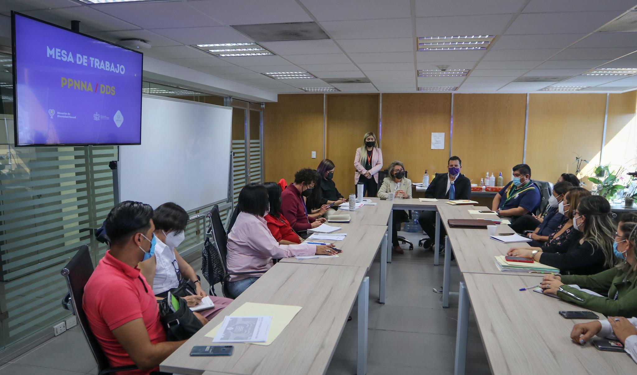 Reunión de Trabajo con Delegaciones Institucionales de la PPNNA.